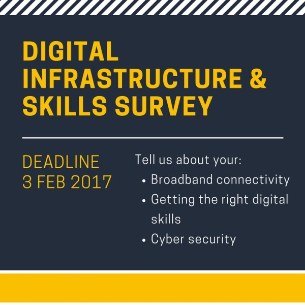 Digital infrastructure & skills survey